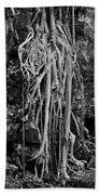 Ghostly Roots - Bw Beach Towel