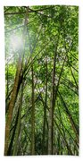 Giant Bamboo In Forest With Sunflare Beach Towel