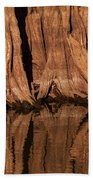 Giant Cypress Tree Trunk And Reflection Beach Towel