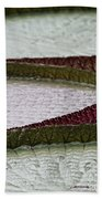 Giant Lilly Pads Beach Towel