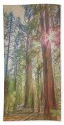 Giant Sequoias Beach Towel