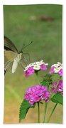 Giant Swallowtail Butterfly II Beach Towel