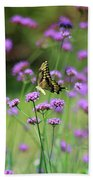 Giant Swallowtail Butterfly In Purple Field Beach Towel
