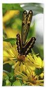 Giant Swallowtail Wings Folded Beach Sheet