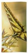 Giant Swallowtail With Yosemite Showy Milkweed Beach Towel