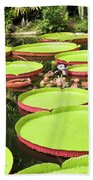 Giant Water Lily Platters Beach Towel