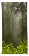 Giants In The Mist Beach Towel