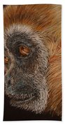 Gibbon Beach Towel