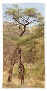 Giraffe Camouflage Beach Towel