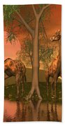 Giraffe Family By John Junek Beach Towel