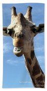 Giraffe Greeting Beach Towel