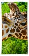 Giraffe Profile Beach Towel