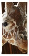 Giraffe Taking A Peek Beach Towel