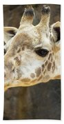 Giraffe Up Close Beach Towel