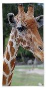 Giraffe Youth Beach Towel