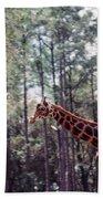 Giraffesgalore Beach Towel