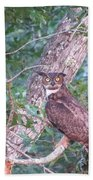 Give A Hoot Beach Towel
