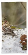 Give Me A Kiss. Redpolls And Greenfinches Beach Towel