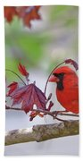 Give Me Shelter - Male Cardinal Beach Towel by Kerri Farley