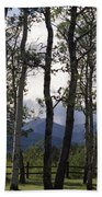 Glacier National Park Green Trees Mountains Beach Towel
