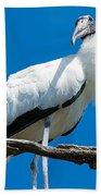 Glamorous Wood Stork Beach Towel