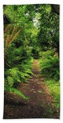 Glanleam, Co Kerry, Ireland Pathway Beach Towel