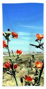 Globe Mallows Beach Towel
