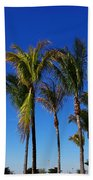 Glorious Palms Beach Towel