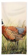 Glorious Pheasant-1 Beach Towel