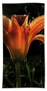 Glowing Day Lily Beach Towel