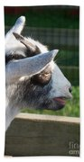 Goat Minature Beach Towel