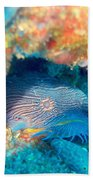 Goatfish Beach Towel