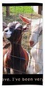 Goats Poster Beach Towel