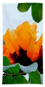 Gold African Tulips Beach Towel