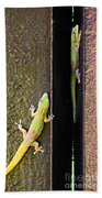 Gold Dusted Day Gecko Beach Towel