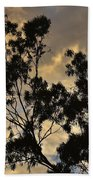 Gold Sunset Tree Silhouette I Beach Towel