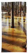 Golden Brown Frozen Pond Beach Towel
