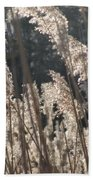 Golden Brown Beach Towel