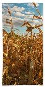 Golden Crop Beach Towel