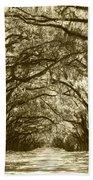 Golden Dream World Beach Towel