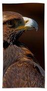 Golden Eagle In The Summer Sun Beach Towel by Sue Harper