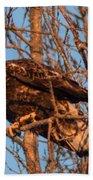 Golden Eagle Liftoff Beach Towel