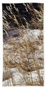 Golden Grasses In Sun And Snow Beach Towel