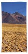 Golden Grasslands And Miniques Volcano Chile Beach Towel