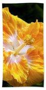 Golden Hibiscus - Hawaii Beach Towel