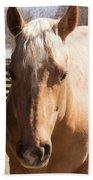 Golden Horse Beach Towel