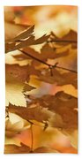 Golden Light Autumn Maple Leaves Beach Towel