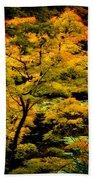 Golden Maple Beach Towel