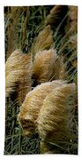 Golden Pampas In The Wind Beach Towel