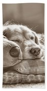 Golden Retriever Dog Sleeping With My Friend Sepia Beach Sheet